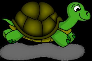logo turtle