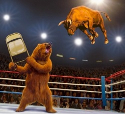 Fight_Bulls_vs_Bears_-_Google_Search