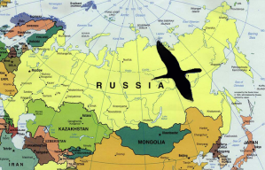 Russian Map Black Swan