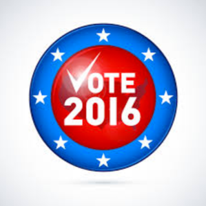 election_concerns_-_google_search