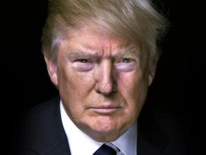 trump_-_google_search
